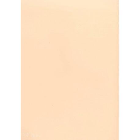 PAPEL COLOR A4 80 GRS. 100 H. SALMON