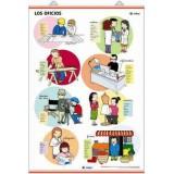 LAMINA LOS OFICIOS / EL TRANSPORTE EDIGOL