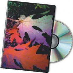 (L) ESTUCHE DVD SLIM PACK 10 UD